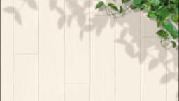 白塗りの壁