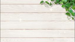 白い板と葉っぱ