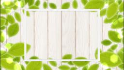白壁と葉っぱ