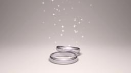 回転する二つの指輪に舞い降りる光の動画